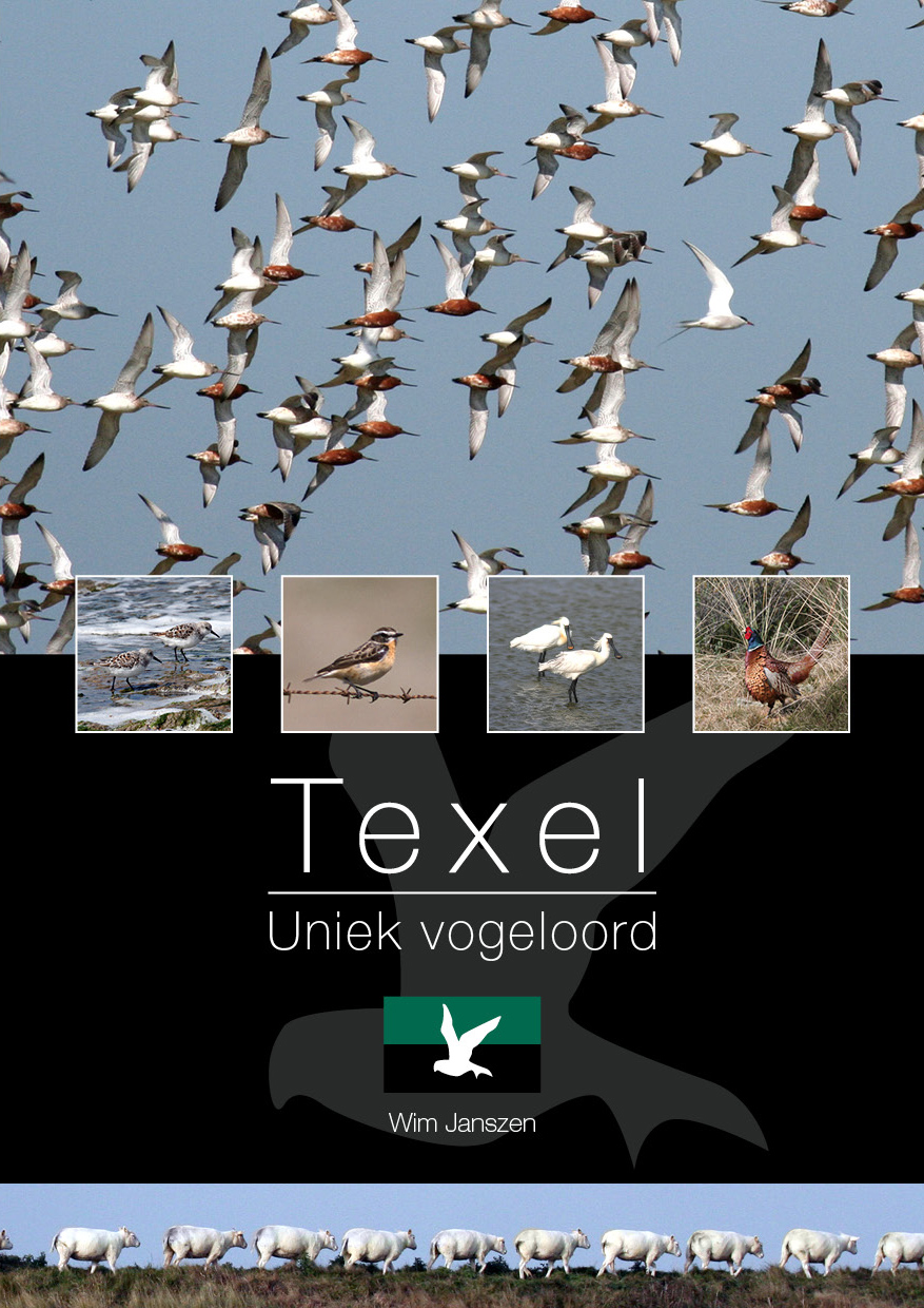Texel_Cover_01