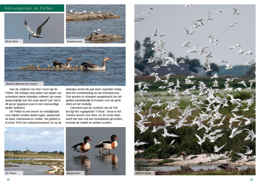 Texel_Pages_01