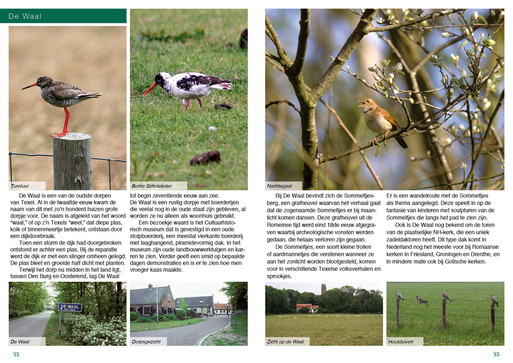 Texel_Pages_03