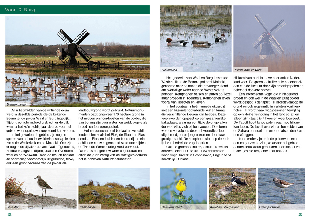 Texel_Pages_04
