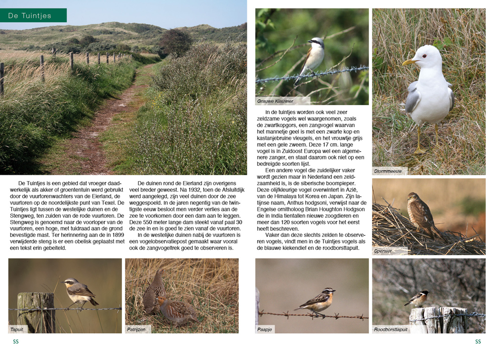 Texel_Pages_07